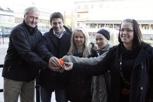 Nu är det klart. det blir ett damlag i bandy i Hälsingland i vinter. Bengt Sandström kom på idén, Lars Larsson är LBK:s representant i laget, tjejerna Julia Eliasson och Linnea Larsson ska spela och Linda Fransson är Hälsinglands Bandyförbunds representant.