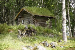 En av byggnaderna som flyttats till hembygdsgården – som ligger mitt i centralorten Los – är ett häbre från Tensberg, där timret dateras till 1640.