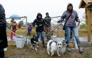På eftermiddagen öppnades grindarna till det cirka 2 700 kvadratmeter stora området där hundar kan rastas och leka.