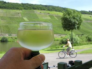 Vlken utsikt. Vad kan vara mer naturligt än ett svalkande glas av ortens rieslingvin när man cyklat hela dagen mellan vinplantorna.