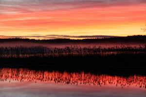 En av snöfria decembers vackra solnedgångar över sjön Gnien i Ramnäs.