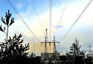 Miljöpartiet går till val på att kärnkraftsreaktorer i Sverige ska stängas redan under nästa mandatperiod. En trygg energitillgång för basindustrin är helt centralt för att inte kostnader ska öka och därmed hota att slå ut svensk produktion, skriver moderaten Saila Quicklund.