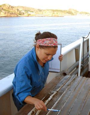 Marinbiolog Anna Apler undersäker sediment som tagits upp från havsbotten efter kusten i länet.