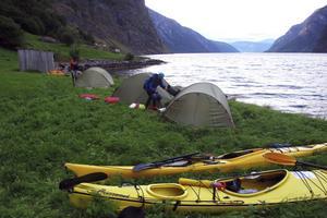 Dags att slå nattläger på getternas betesmark vid Aurangerfjorden.