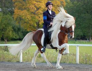 Ryttare Malin von Schwebergk på hästen Hallegur från Hyndevad.