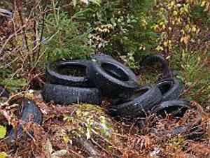 Foto: ULF GRANSTRÖM Nedskräpning och miljöbrott. Sammanlagt 32 däck har slängts i skogen intill riksväg 68, trots att de gratis kan lämnas in till närmaste däckfirma.