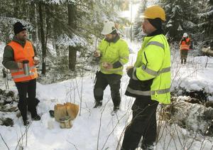 Daniel Blom och Tobias Lundh som jobbar med nedmonteringen av gamla elstolpar fick besök i skogen i Edstuga av bland andra Jonatan Björck, pressansvarig på Ellevio.