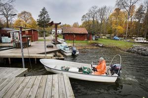 Hans Johansson, ordförande för Hjälmarens fiskarförbund, med 34 yrkesfiskare runt sjön som medlemmar, kommer in till sin hamn i Sandshagen, vid Göksholm.