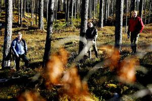 Håkan Blomqvist, naturvårdsspecialist SCA, Sten Edlund och Bo Magnusson från Skogstyrelsen.