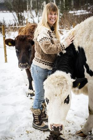 Yvonne Odsberg med sina två kor. Hon har ridit in dem och håller på att köra in dem.