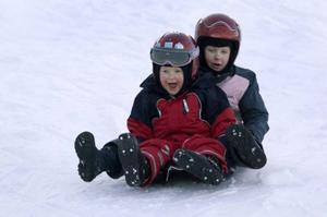Barnen i årskurs två på Sånghusvallen vill ha en pulkabacke.