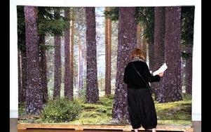 Den mest fascinerande av vävmässans 100-tals vävar. Svensk skog av Helena Hernmarck. Många ville ta klivet in i väven, ursprungligen ett foto av P Roland Johanson från Falun som Alice Lund Textilier AB i Borlänge låtit väva en kopia av.