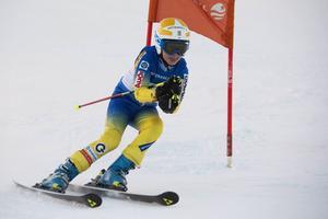 Elliot Malker, Sundsvalls Slalomklubb, koncentrerad och i fartställning.