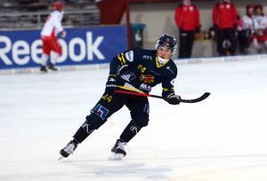 Mikael Pettersson, Falu BS