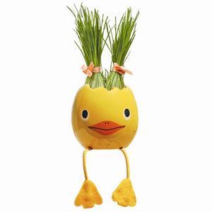Hos bluebox.se hittar du den otroligt söta odlingskycklingen som är handgjord i Japan. Den är formad som ett ägg och innehåller växtmedium och frön av en sorts rajgräs. Det enda du behöver göra är att vattna. Inom någon vecka kommer ett tjockt gräs att växa från kycklingens huvud. Du kan klippa gräset, styla det och låta det växa igen. Kycklingen kostar 89 kronor.