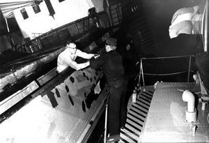 Ralf skickade en bild som han fick av GD-fotografen efter förlisningen. Bilden visar kocken Rolf Spjut som tar sig som siste man över till TV 39.