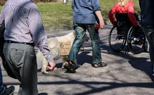 Också en hund fick följa med under marschen och bar budskapet