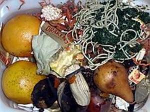 Foto: Helena e Källgren Rester blir jord. Ett av de mest naturliga sätten att fullborda näringscykeln är att kompostera. På så sätt förvandlas vårt avfall till något värdefullt och så småningom kan våra kommunala sopberg minska.