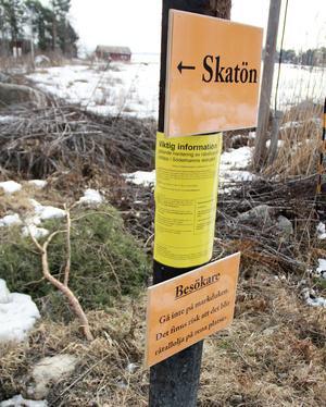 Sommarens enda inrapporterade observation om råtallolja kom från Skatön, som drabbades hårt av utsläppet.