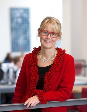 Karin M. Ekström är professor på högskolan i Borås. Hon intresserar sig för samlande, eftersom det är en sorts konsumtion.