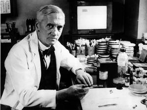 Sir Alexander Fleming. Sedan Fleming upptäckte penicillinet 1928 har antibiotikan räddat miljontals liv. Detta riskerar att omintetgöras om inte kraftfulla åtgärder vidtas. Foto: Scanpix