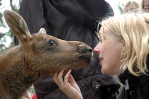Josefin Nygren, Arbetarbladets lokalredaktör i Ockelbo, fick en puss.