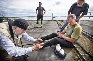 Lennart Urby dokumenterar de två falkungarna, en hona och en hane, som Lars Leksén nyss märkt och vägt klart. Falkungarna såg ut att vara i gott skick.  Lennart Urby är en av dem som var med i pilgrimsfalkprojektet från början i Västerås och Västmanland. – Det känns härligt med ännu en häckning.  När jag var ung så häckade de sista pilgrimsfalkarna ute på några öar i Mälaren. Det är 60 - 65 år sedan och nu är de tillbaka, det är så härligt, säger 82-årige Lennart Urby. – Det är unikt att vi fått häckning så fort här i Västerås jämfört med andra platser. Här tog det bara fyra år för den första  häckningen och för den här har det tagit sex år, säger en glad och stolt Lennart Urby.