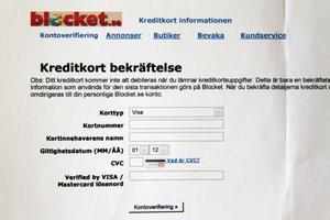 Så här såg det ut när Lars Åström klickade på länken han fick i mailet.