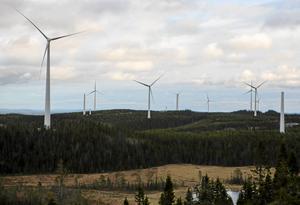 """""""Markägare som arrenderar ut mark till vindkraftsoperatörer riskerar att bli rejält blåsta. De riskerar att få stå för hela nedmonteringskostnaden..."""" skriver insändarskribenten."""