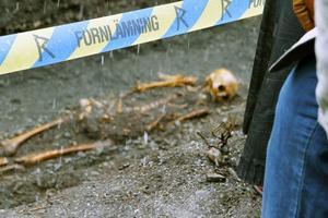 Arkeologerna förklarar att det går att datera fynden grovt beroende på hur deras armar är placerade när de begravdes.