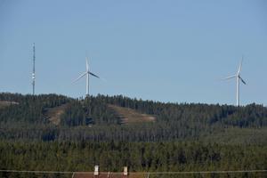Borta med vinden anser att kommunen bör markera att det inte ska byggas fler vindkraftverk i Vansbro