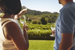 Om du reser själv är Per Karlssons tips att höra av sig till vingården i förväg, då är chansen större att de har tid att ta emot. Men våga gärna satsa på de mindre producenterna, det kan ge en upplevelse utöver det vanliga.   Foto: Jacob Lund/Shutterstock.com