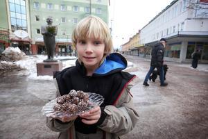 Fira Sten Stures ben - med en laddning chokladbollar. Adam Hessel bjuder.