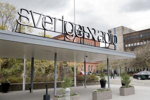 Mikael Strandman föreslog 2015 att tillsättningen av reportrar, journalister och programledare inom public service skulle ske procentuellt efter utfallet i riksdagen.