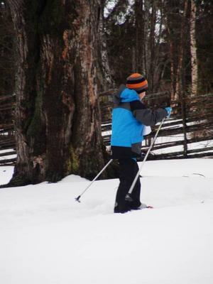 Elis Magnusson, 6 år, var en av många unga skidåkare inne på Jamtli under söndagen.