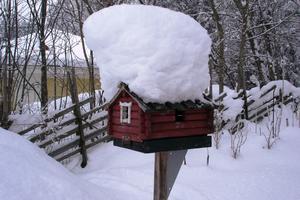 Ett litet rött hus på landet