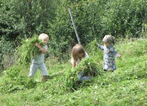 Många barn passade på att tumla omkring i gräset.