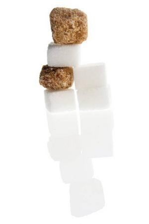 Man kan klappa humlan utan att det bränns, men sockerbitarna har ingen verkan mot getingstick.
