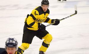 Johan Skiöld, VIK Hockey.