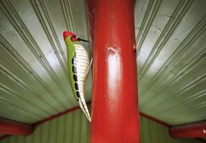 Rubinrött är en av de genomgående färgerna i huset. Den andra är lindblomsgrönt.
