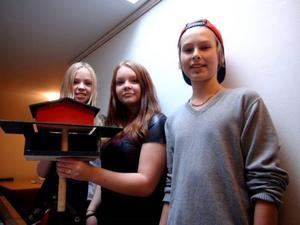 Alva Höglund, Erika Wallin och Emil Nyh jobbar fram bästa möjliga skydd.
