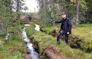 Daniel Palm finner det trist att det fortfarande ser ut så här i våra skogar.