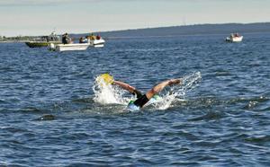 Sammanlagt simmade deltagarna runt fyra kilometer i det tiogradiga vattnet.