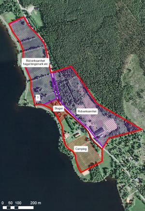 Campingområdet föreslås sträcka sig från Räfsnäsgården till de nuvarande volleybollplanerna. Men indelningen är preliminär än så länge.
