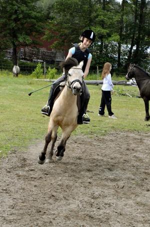 Lisa Huss har ridit sin Knyttes Niljus i de två tidigare deltävlingarna i ponnyallsvenskan.