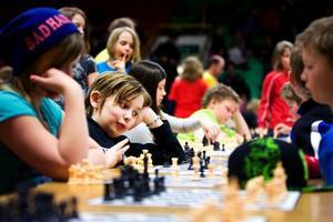 David Elfberg Larsson som går i fyran i Lungviksskolan koncentrerade sig på sitt nästa schackdrag.