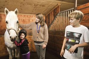 Ia-Li Nilsson, Ellenor Sundin och William Jonsson trivs i stallet med c-ponnyn Mr Bean, som har ett lugnt temperament.