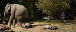 En scen med den ena elefanten ur