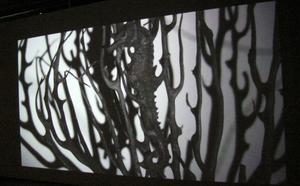 Videon visar föremål från Tilda Lovells utställning i stort format.