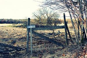 Fick syn på detta på en promenad på Ängsö i April. Ett gammal och trasigt staket kan ha sin tjusning det med.